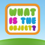 What The Objects